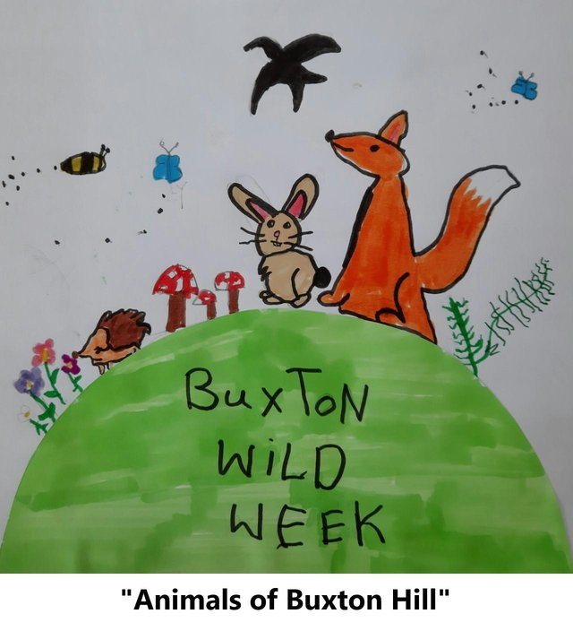 Animals of Buxton Hill by Renn in year six at Buxton Junior School was chosen as the winning design