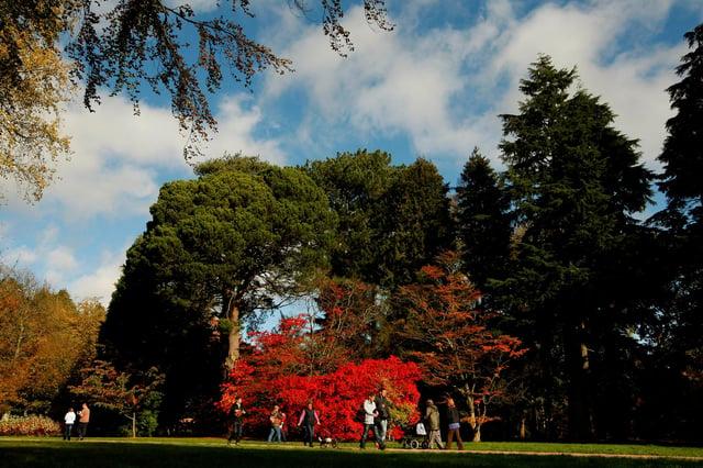 Visitors walk through Westonbirt Arboretum in the Cotswolds near Tetbury. Picture: Dan Istitene/Getty Images.