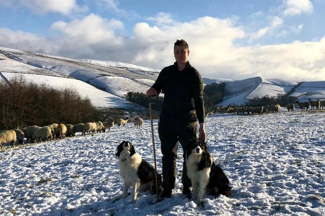 Goyt Valley farmer Sam Bolton with Roy and Rascal and part of his flock.