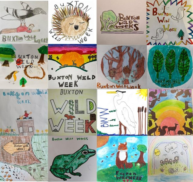 Some of the 115 entries received for the competition