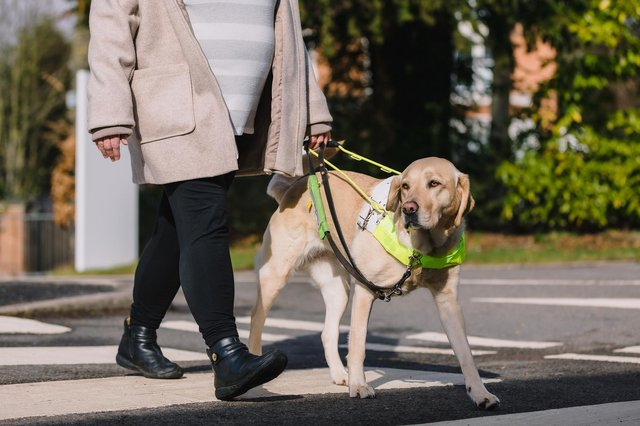 The High Peak Guide Dogs supporter group is open to anyone who would like to support a good cause and be part of a local social group.