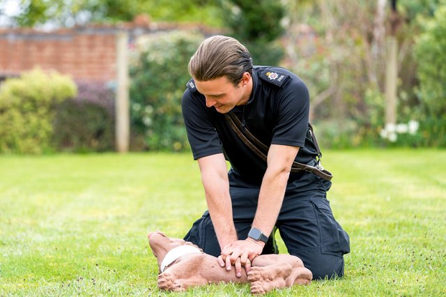 A Police Dog Handler practicing Dog First Aid on a CPR dummy dog.